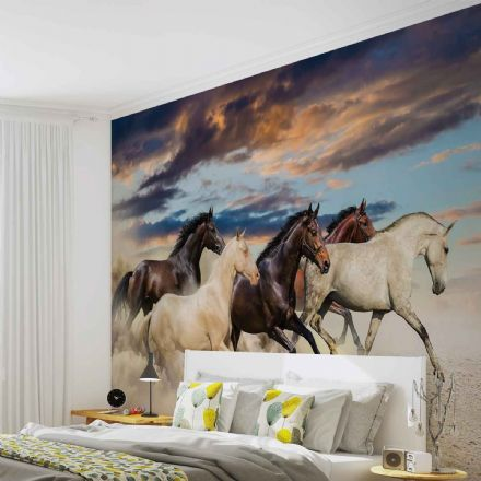 Wallpaper mural - easy install Horses 2964